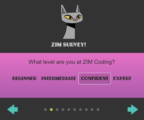 ZIM Survey